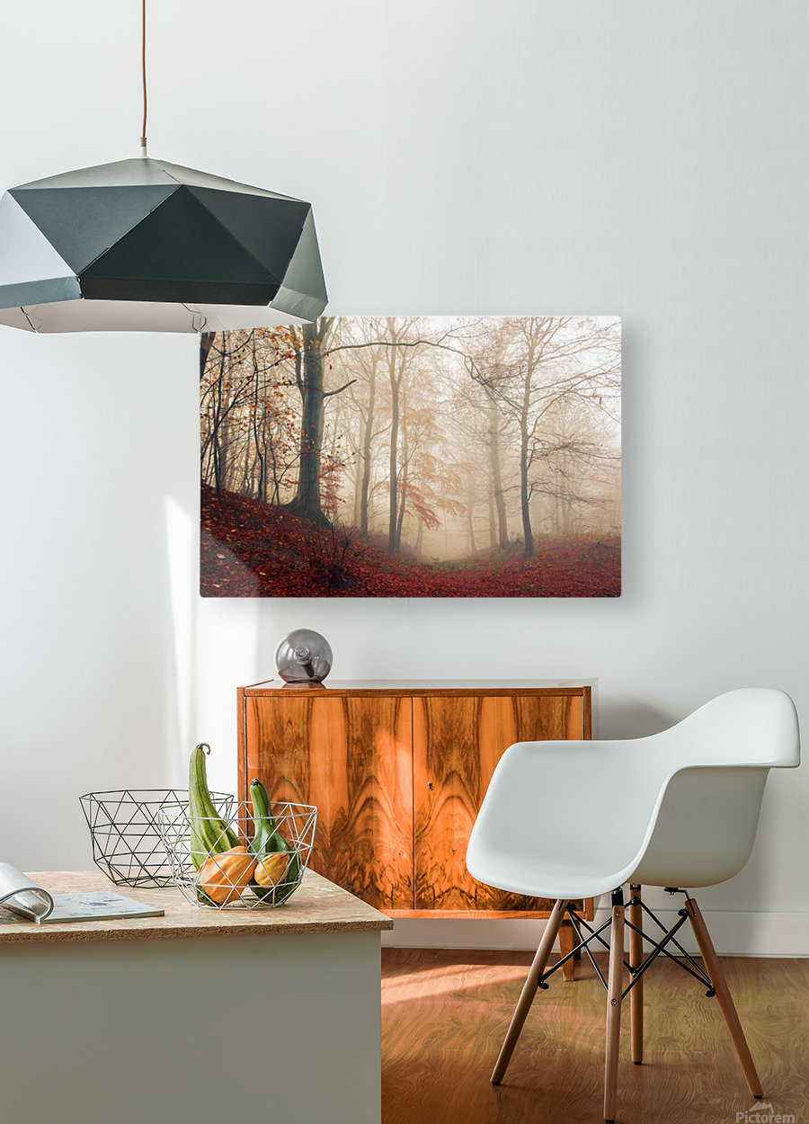 Waiting for the deer.  HD Metal print with Floating Frame on Back