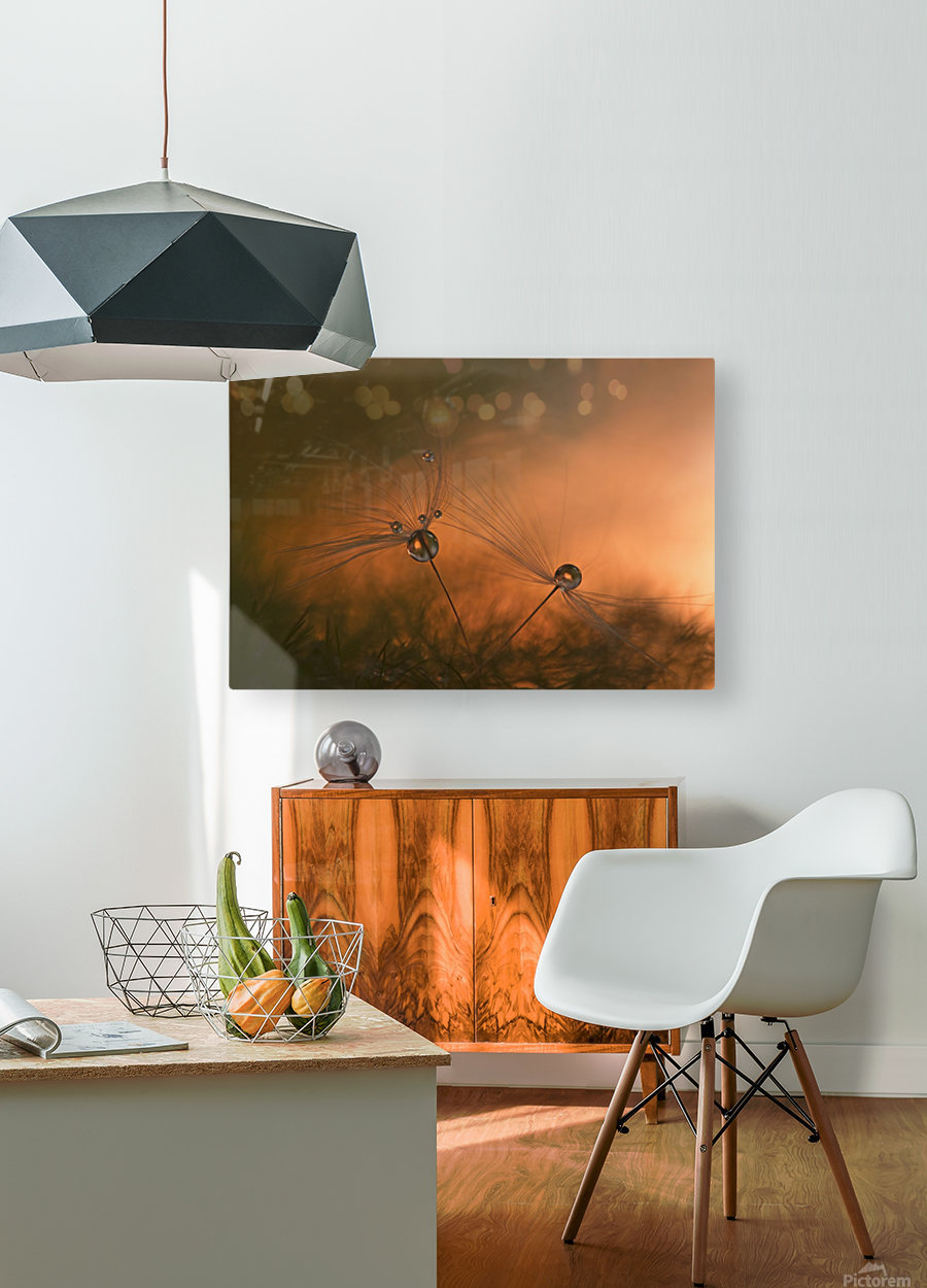 Forest fire  HD Metal print with Floating Frame on Back