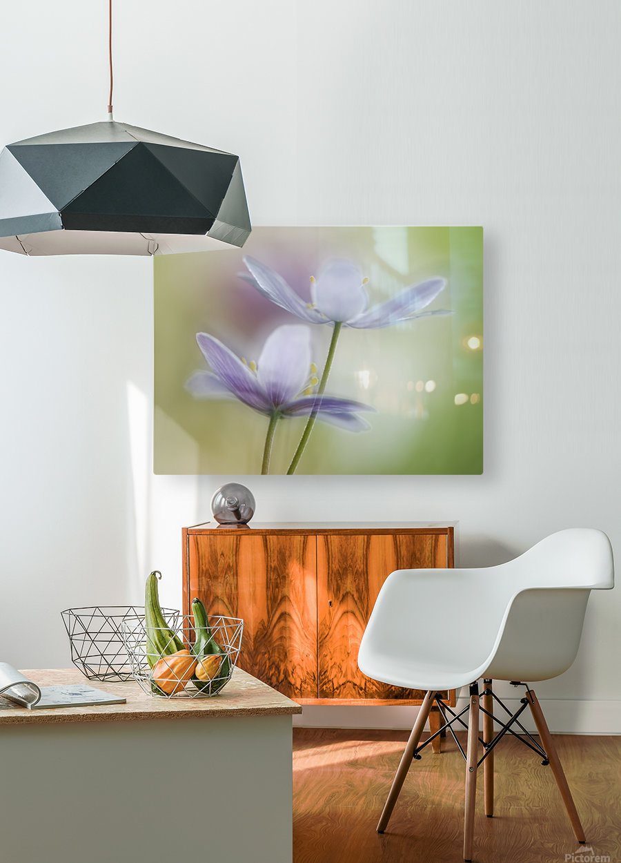 Two of a kind  HD Metal print with Floating Frame on Back