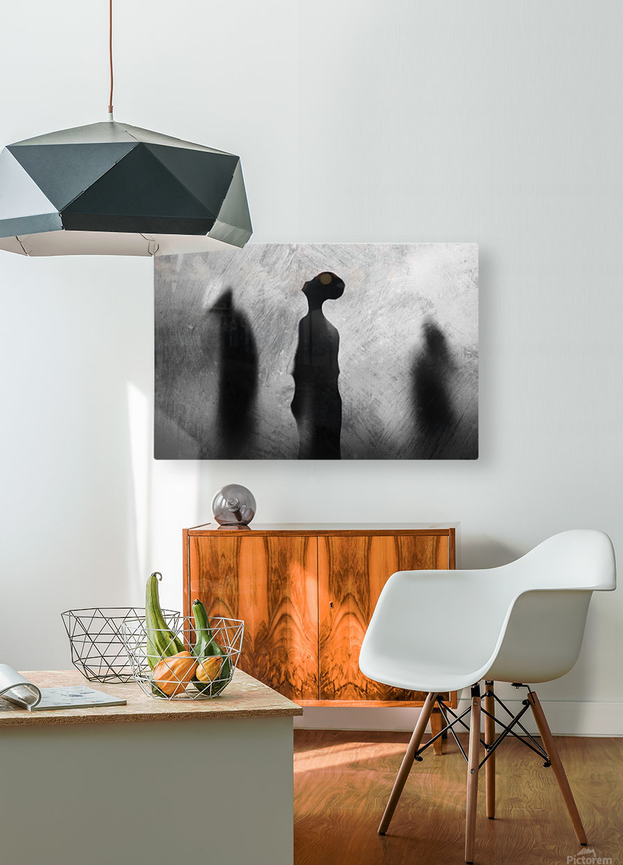 Two In One  HD Metal print with Floating Frame on Back