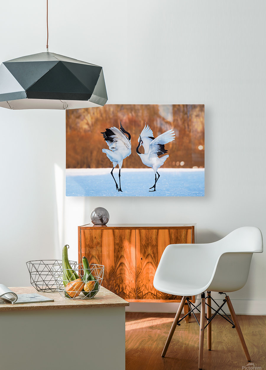 The dance of love  HD Metal print with Floating Frame on Back