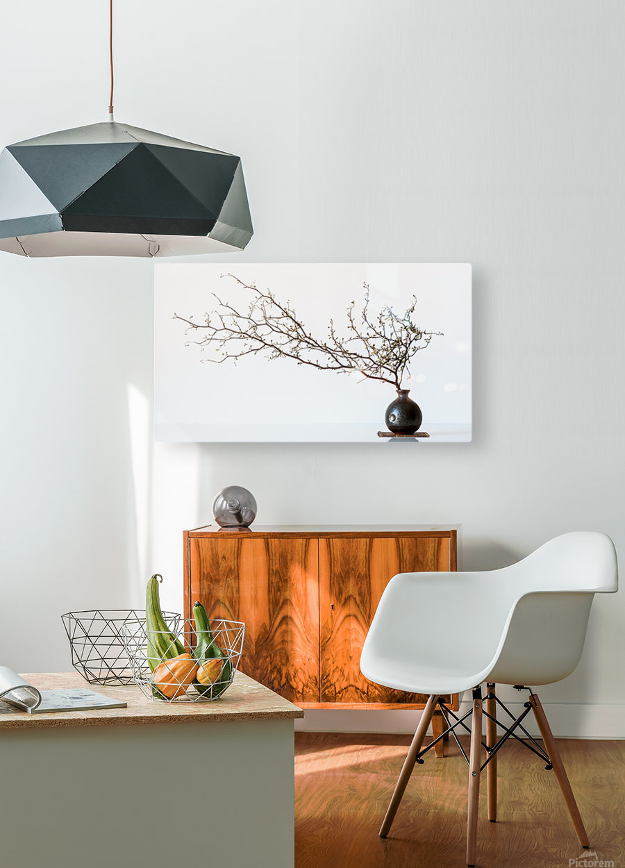 Vase And Branch  HD Metal print with Floating Frame on Back