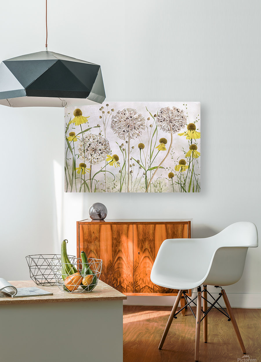 Alliums and heleniums  HD Metal print with Floating Frame on Back