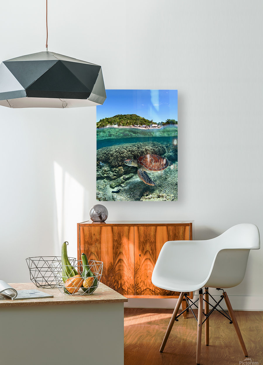 Along shore  HD Metal print with Floating Frame on Back