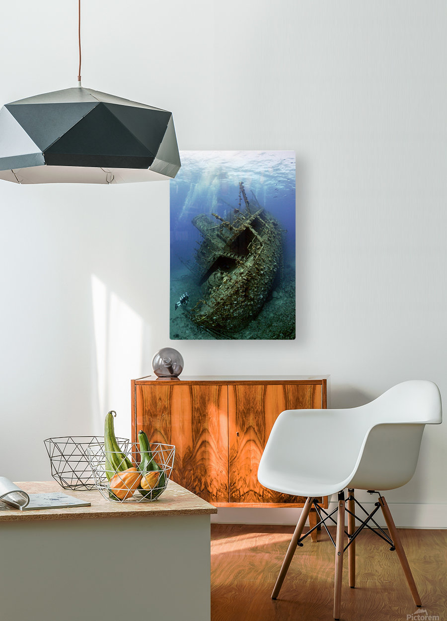 Giannis D wreck.  HD Metal print with Floating Frame on Back