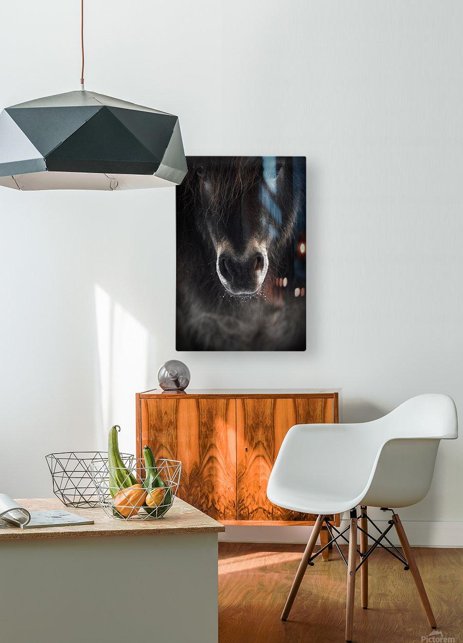 Ulysses  HD Metal print with Floating Frame on Back