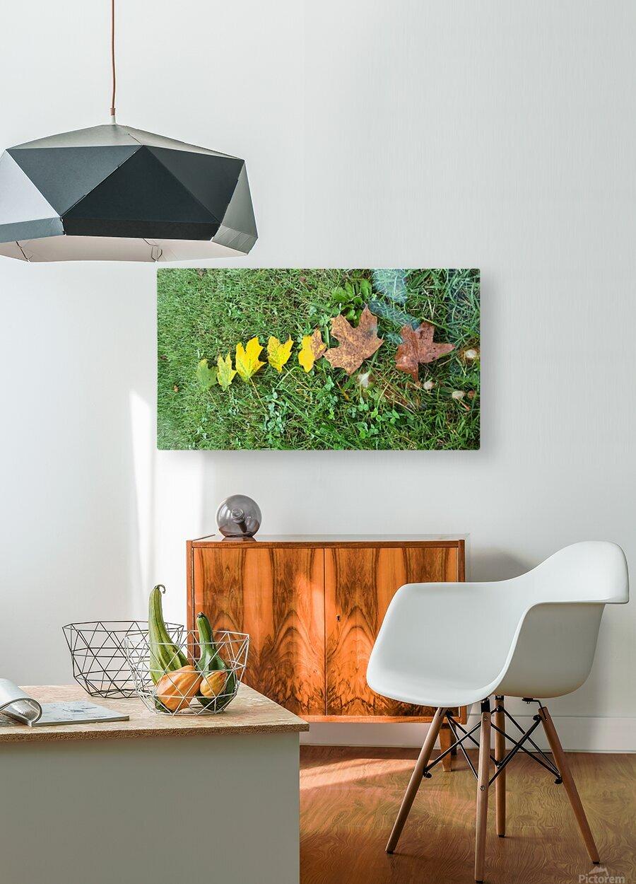 Lifespan  HD Metal print with Floating Frame on Back