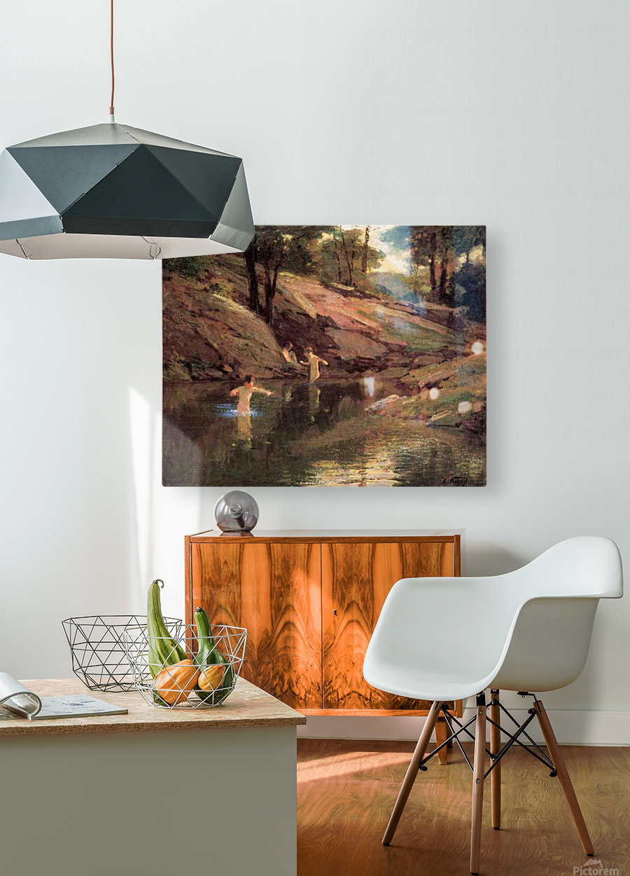 The Swimming Hole  HD Metal print with Floating Frame on Back