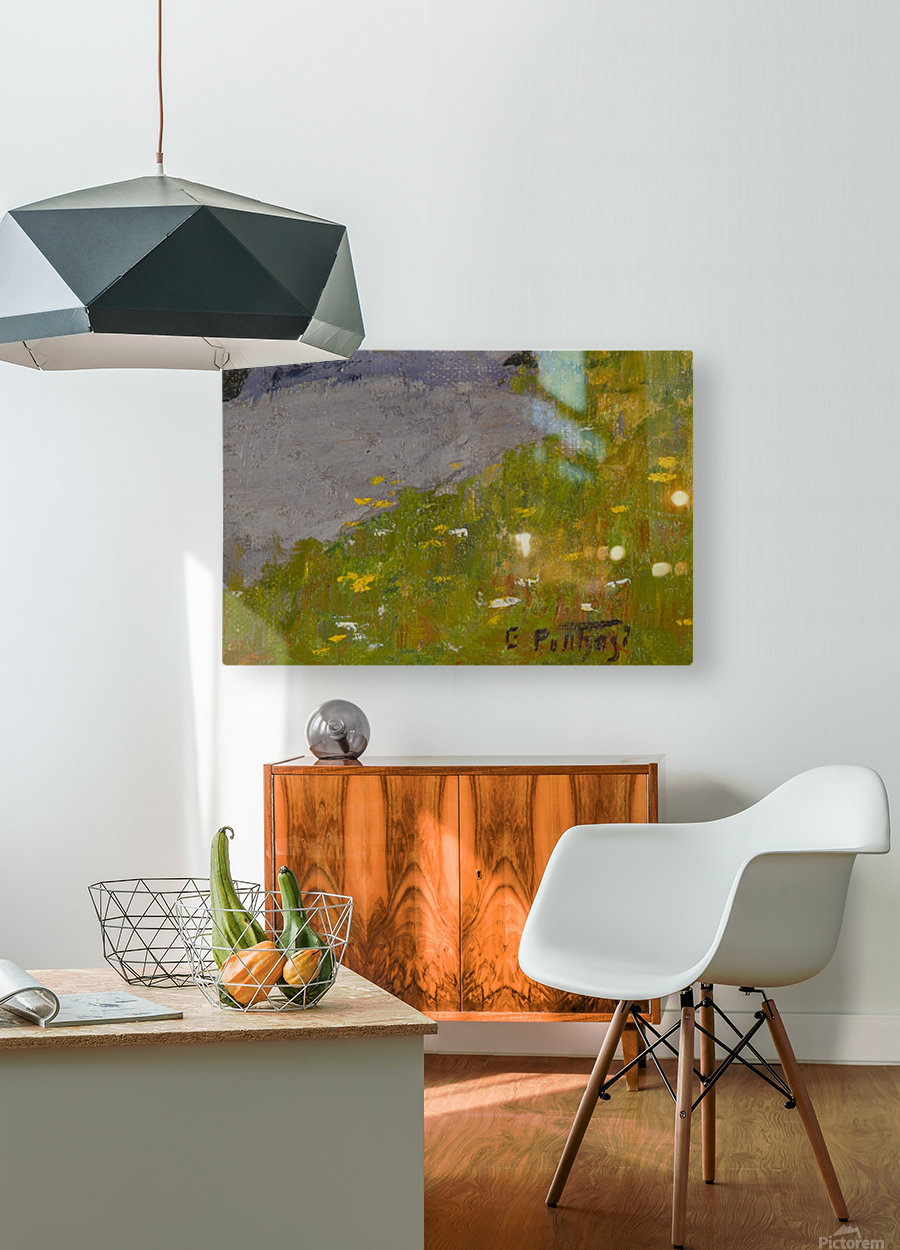 Rocky fields  HD Metal print with Floating Frame on Back