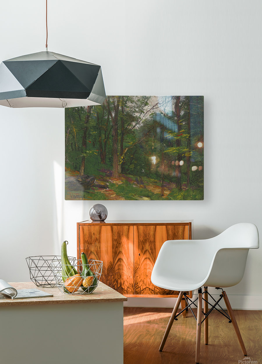 Forest in the spring  HD Metal print with Floating Frame on Back