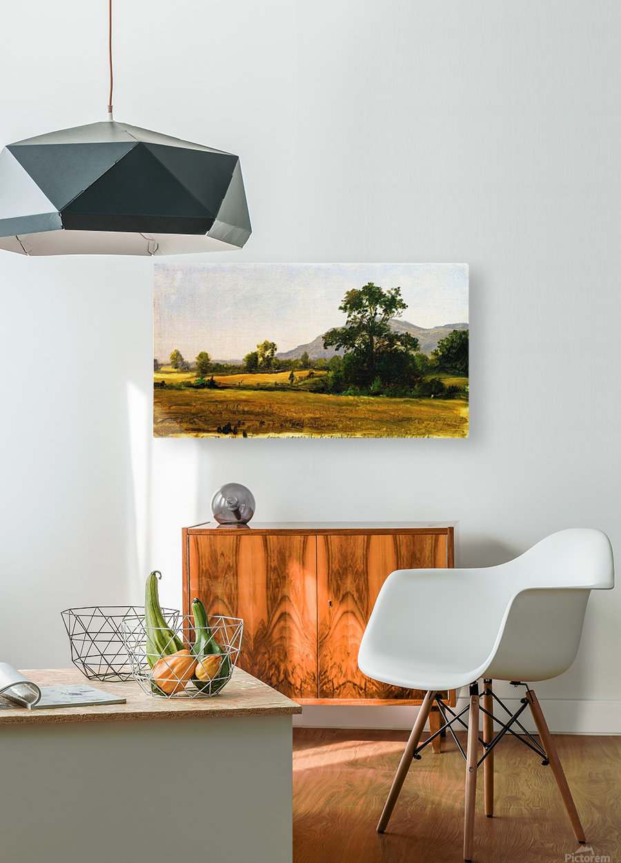 Catskills  HD Metal print with Floating Frame on Back