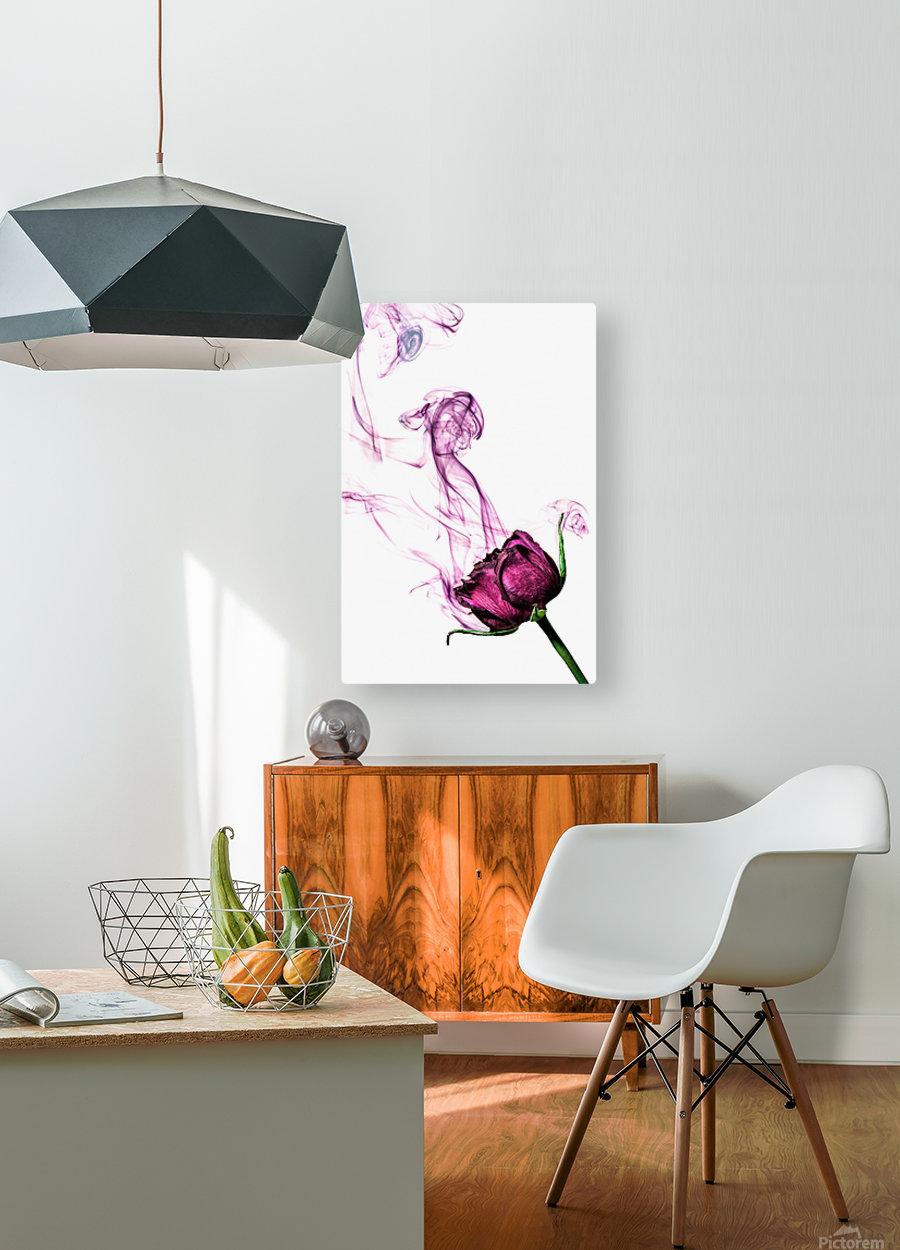 The Smoke  HD Metal print with Floating Frame on Back