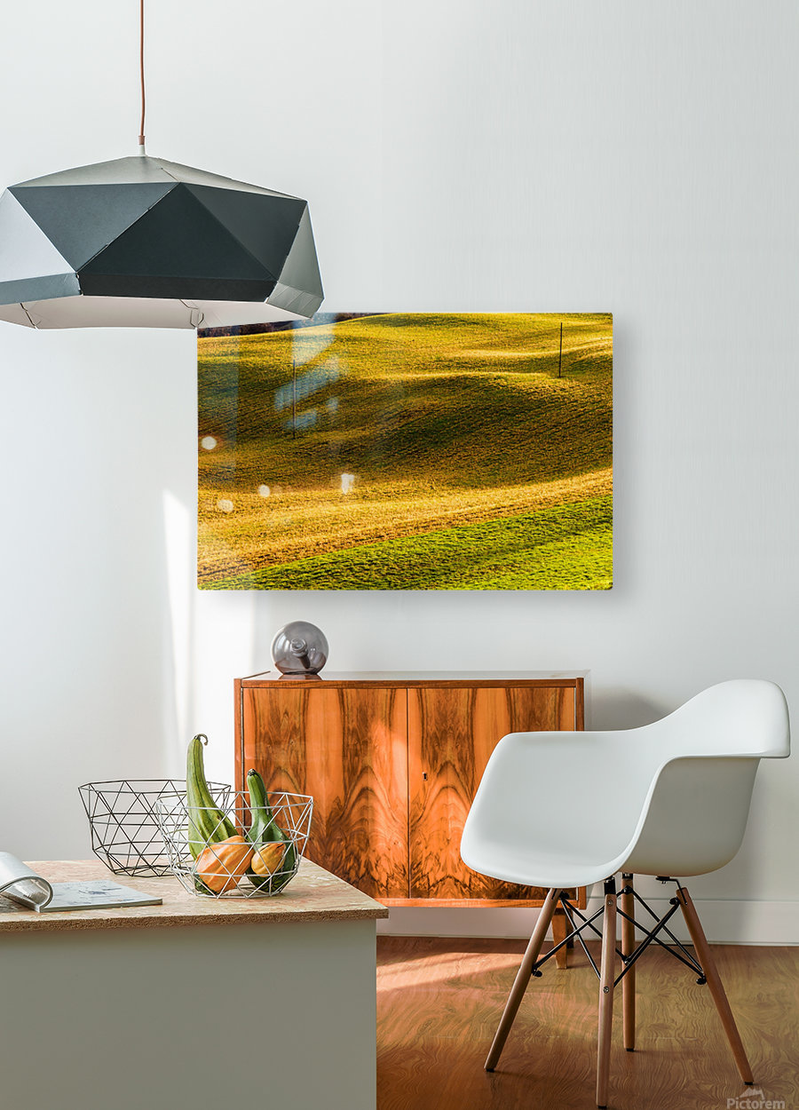 Toano 2  HD Metal print with Floating Frame on Back