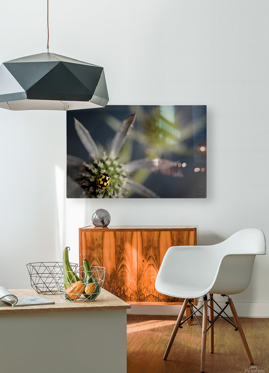 ladybug  HD Metal print with Floating Frame on Back