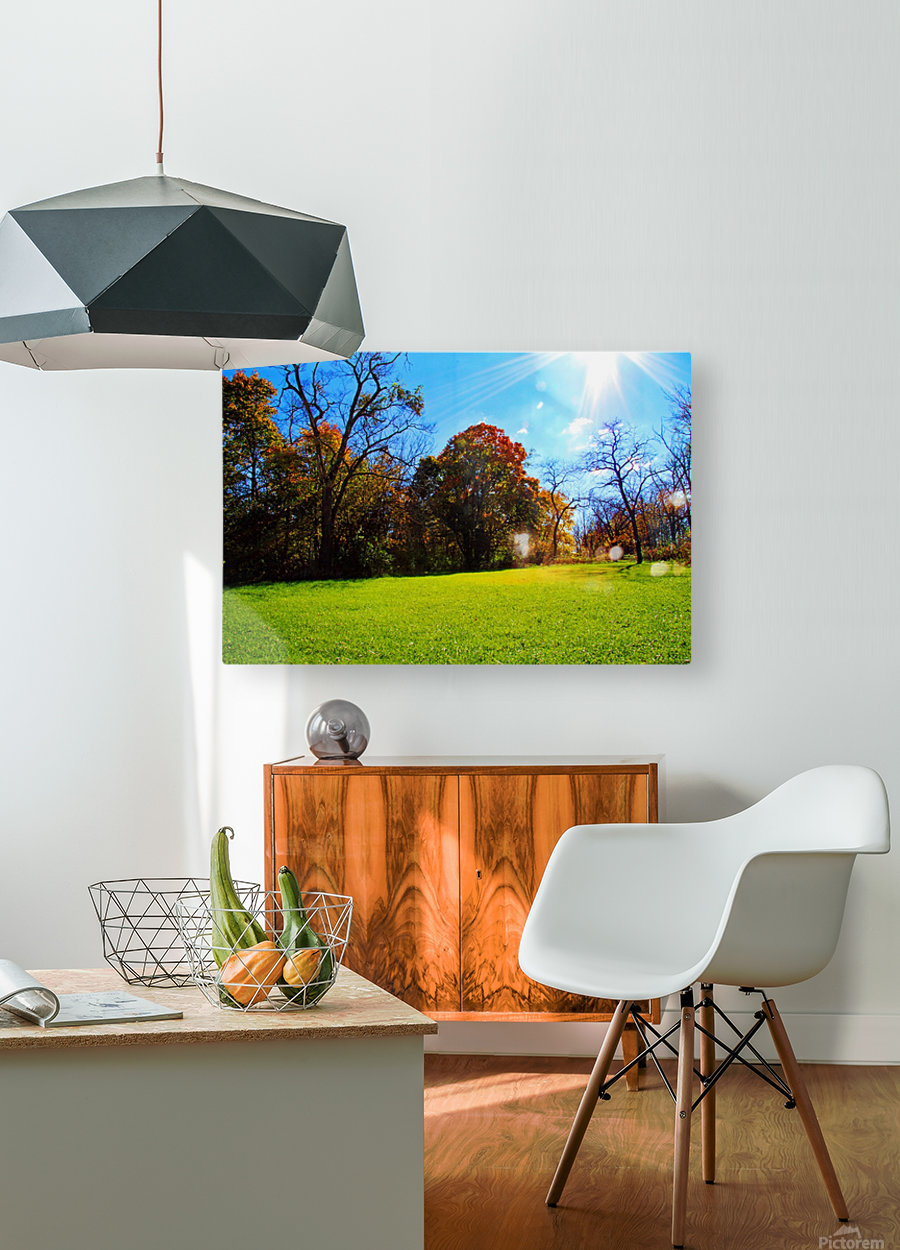 Sunny Fall Day  HD Metal print with Floating Frame on Back