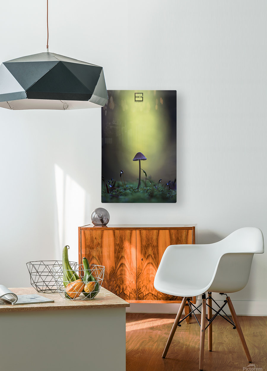 ..  HD Metal print with Floating Frame on Back