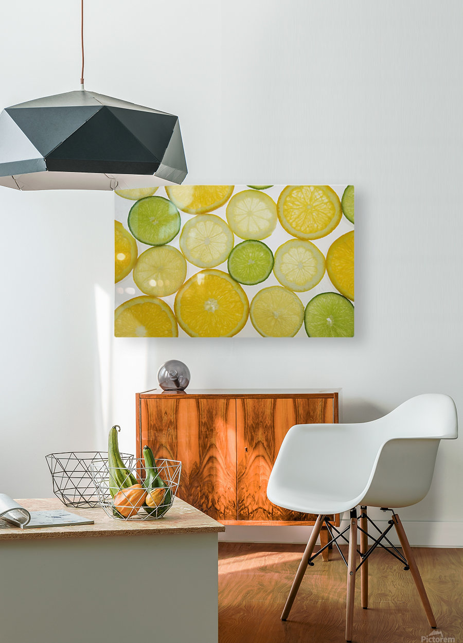 Citrus Slices  HD Metal print with Floating Frame on Back