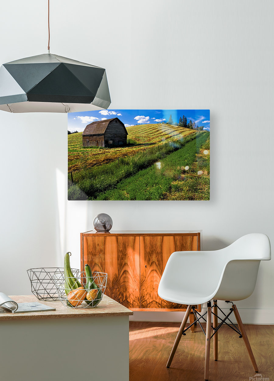 Old Barn In A Field  HD Metal print with Floating Frame on Back