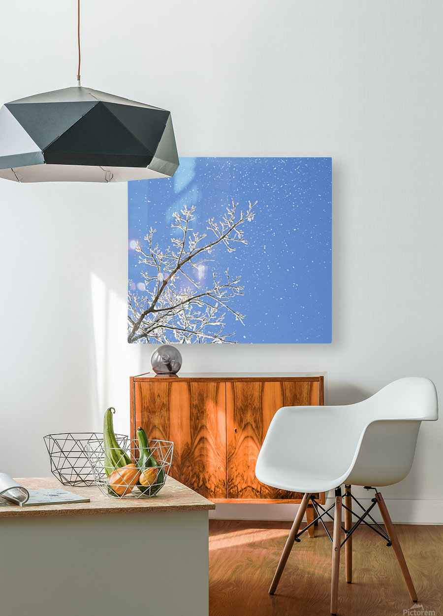 Snowy Day  HD Metal print with Floating Frame on Back