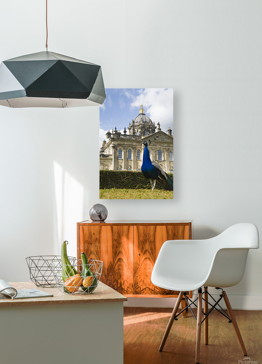 Peacock In Front Of A Building  HD Metal print with Floating Frame on Back