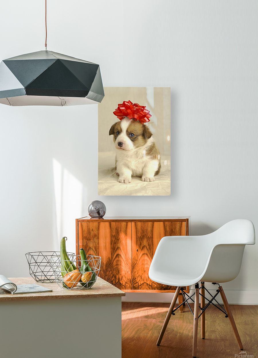 Puppy Wearing A Red Bow  HD Metal print with Floating Frame on Back