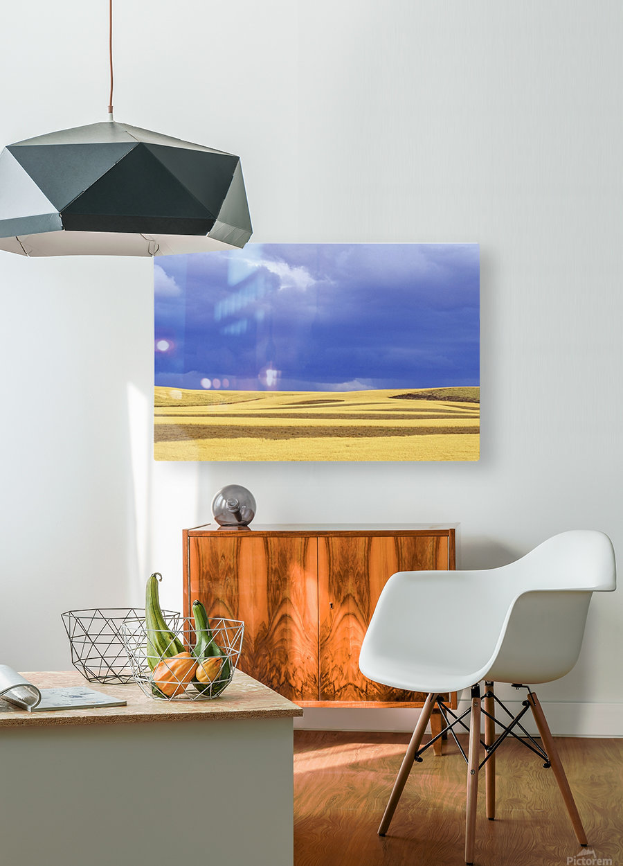 Wheat Fields Near Hermiston, Oregon, Usa  HD Metal print with Floating Frame on Back