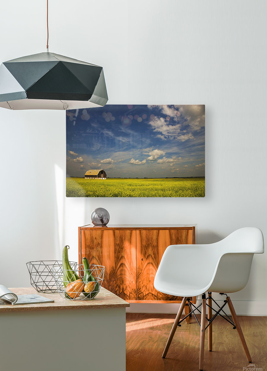 Alberta, Canada; An Old Barn In A Field  HD Metal print with Floating Frame on Back
