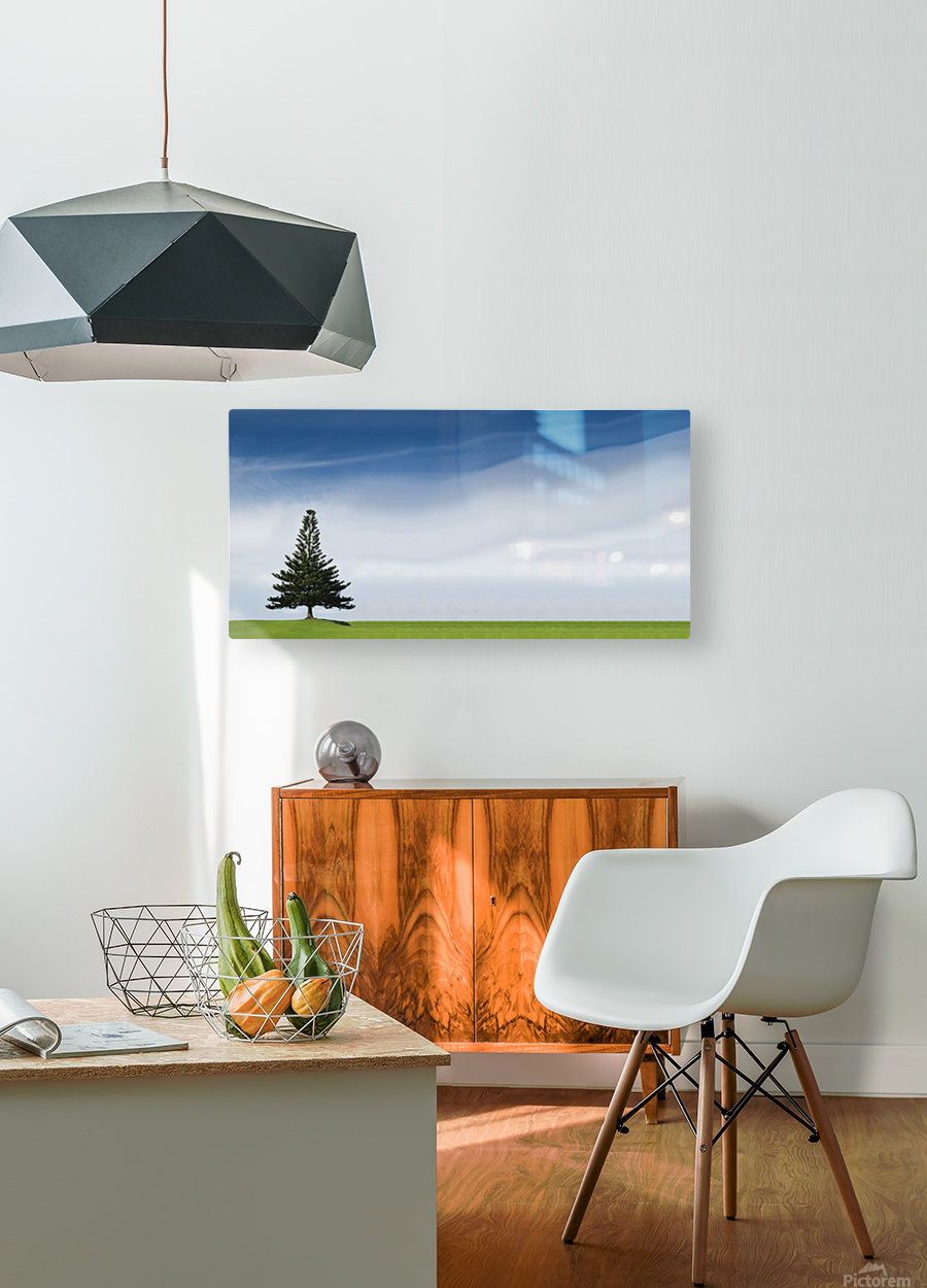 A Coniferous Tree Standing Alone In A Field  HD Metal print with Floating Frame on Back