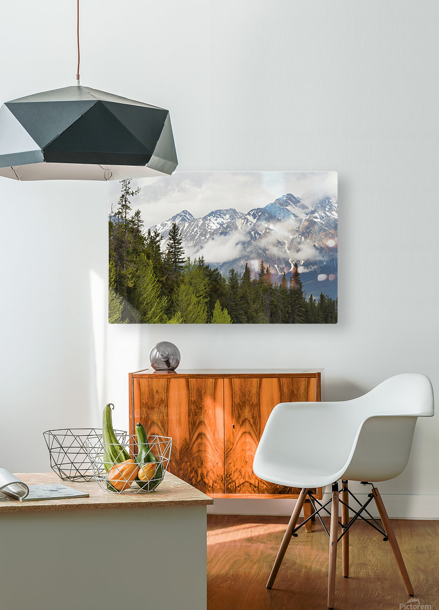 A Forest And The Rocky Mountains; Jasper, Alberta, Canada  HD Metal print with Floating Frame on Back