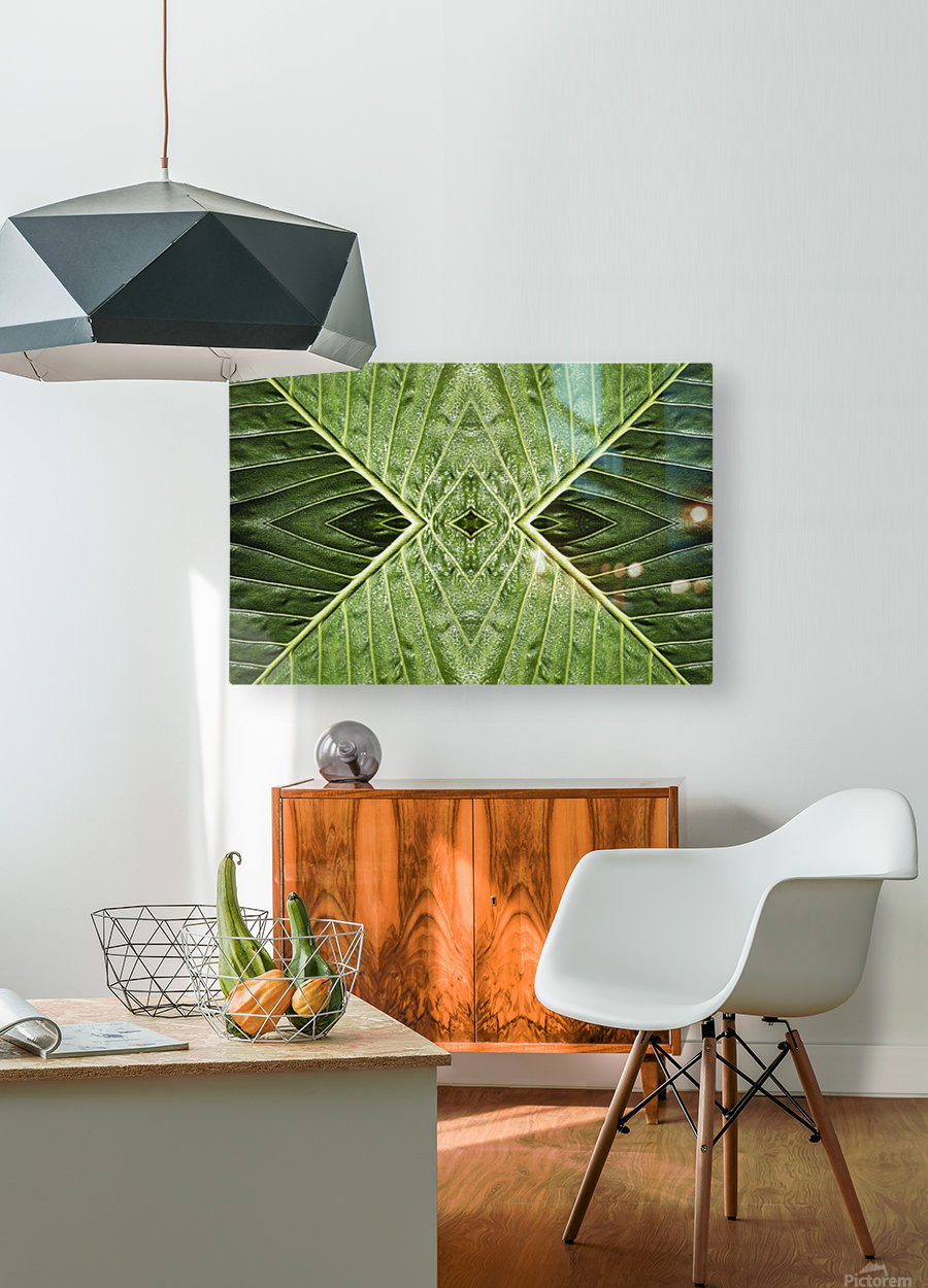 Close up of vein patterns in leaves;Gold coast queensland australia  HD Metal print with Floating Frame on Back