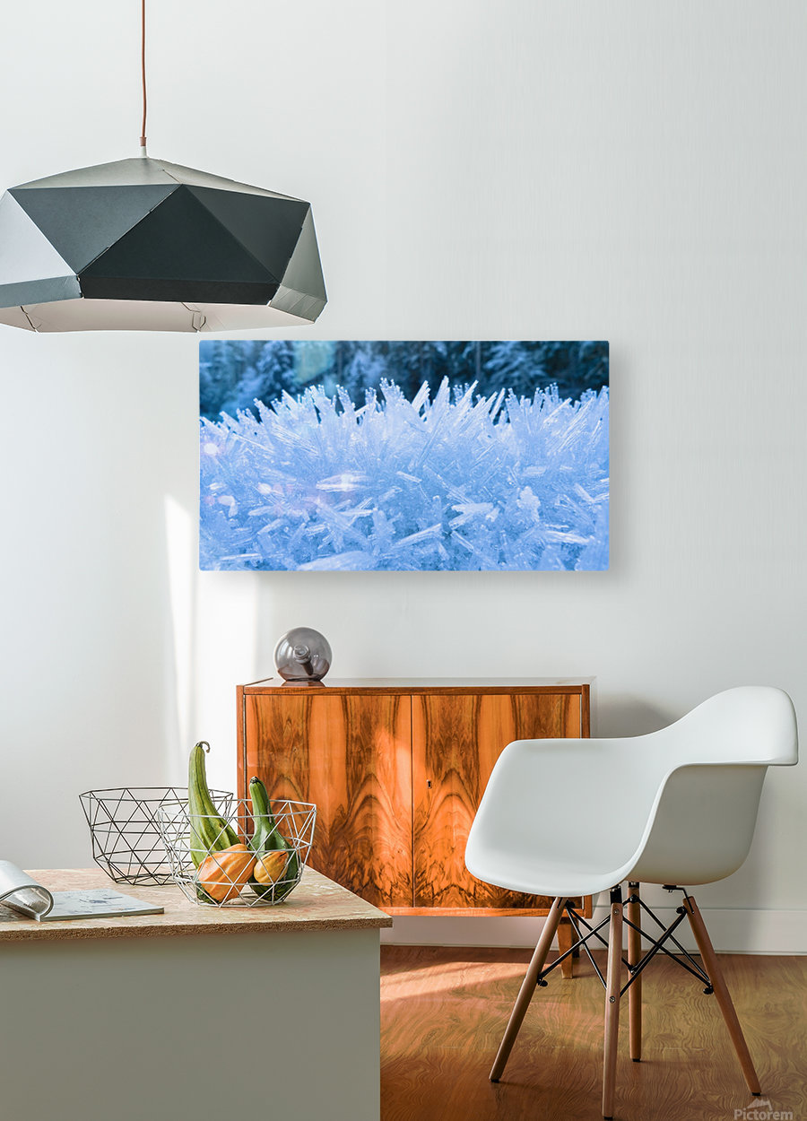 Close Up Of Hoar Frost Along The North Fork Of The Nooksak River During Winter, Mount Baker National Forest, Washington, Usa  HD Metal print with Floating Frame on Back