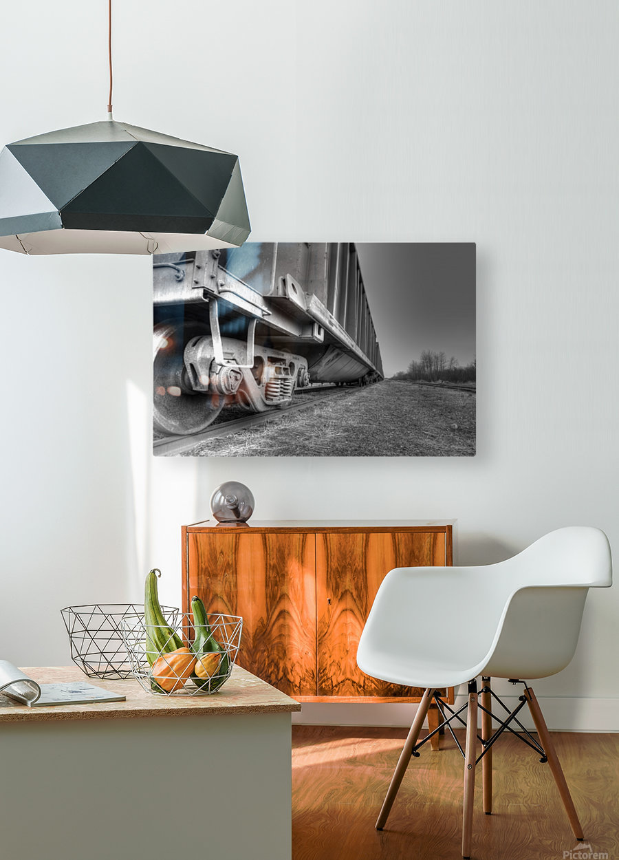 Rail Cars  HD Metal print with Floating Frame on Back