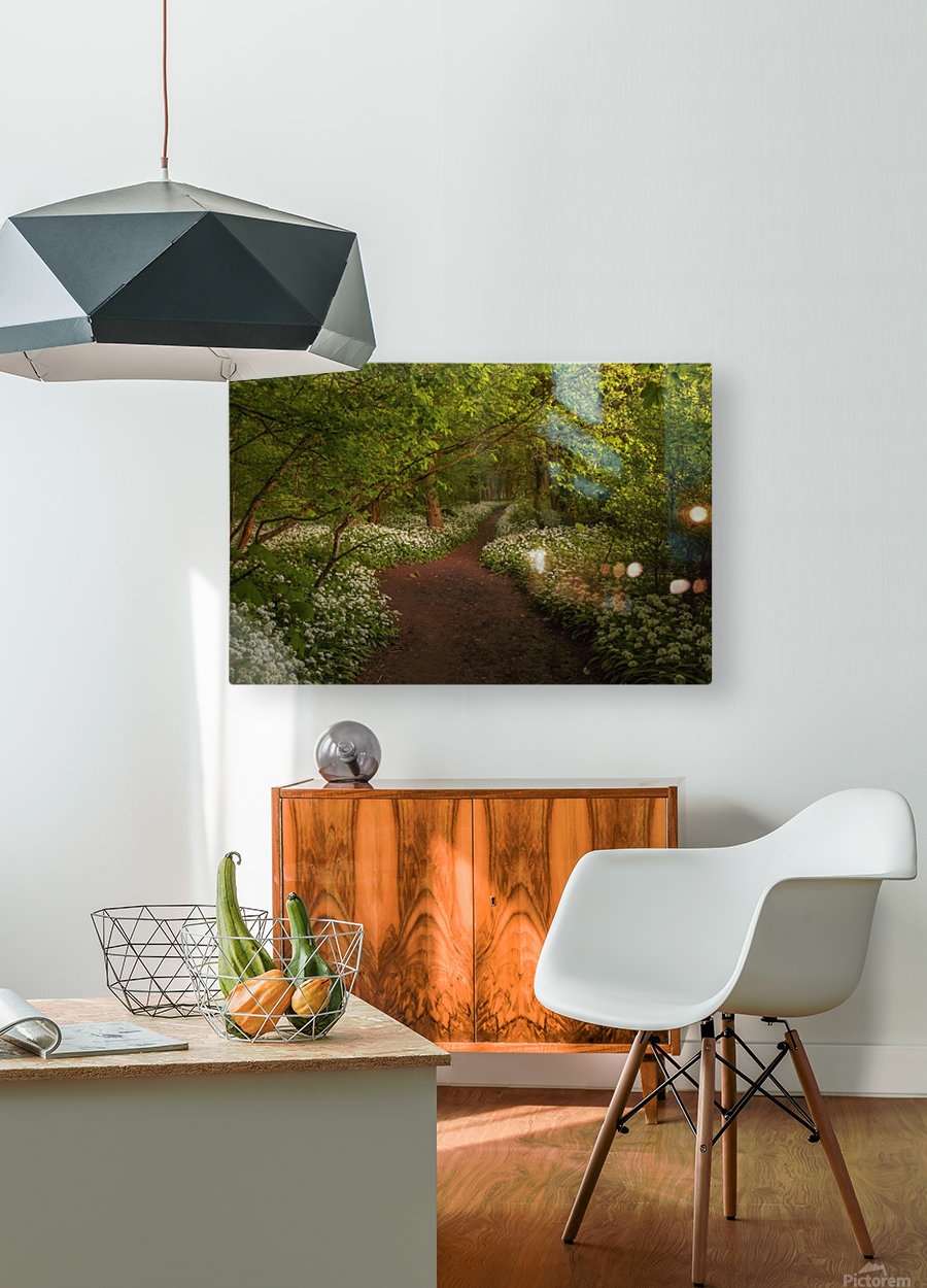 The Path to Fairytales, Ramsons Wood, Lancashire, UK  HD Metal print with Floating Frame on Back
