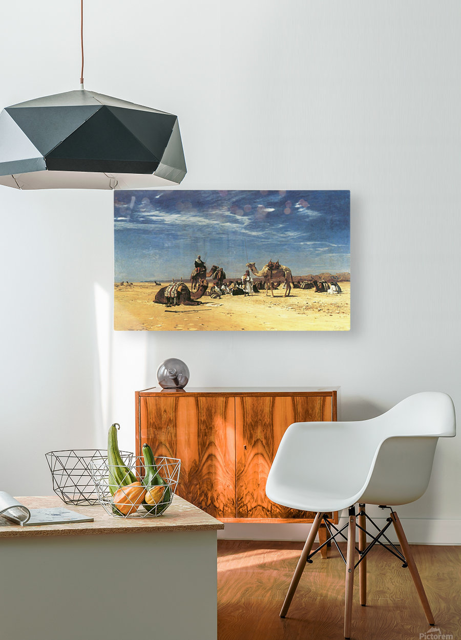 Rast in der Araba  HD Metal print with Floating Frame on Back