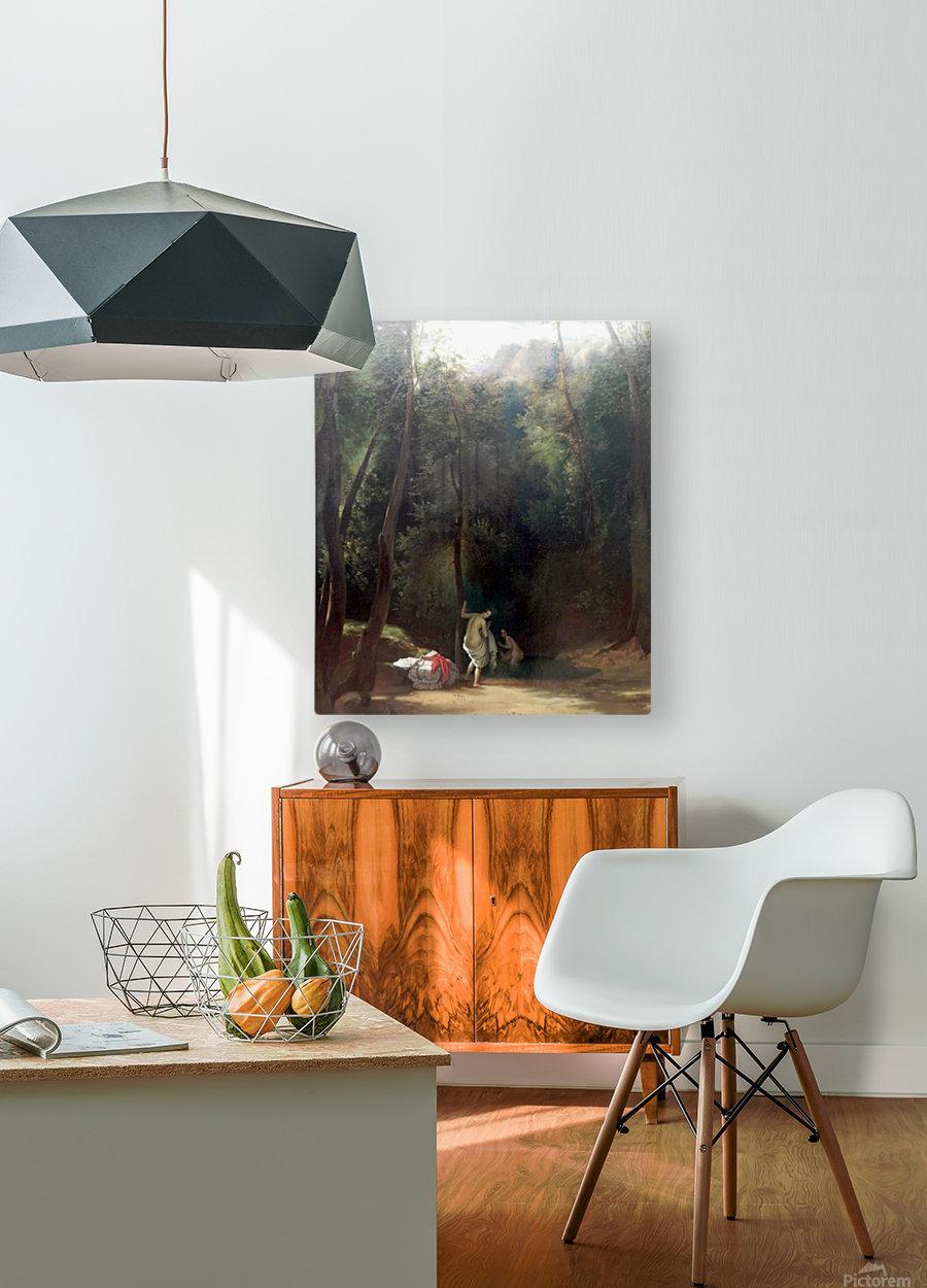 Badende Madchen im Park von Terni  HD Metal print with Floating Frame on Back