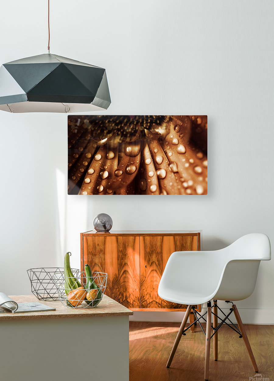FPS-0079  HD Metal print with Floating Frame on Back