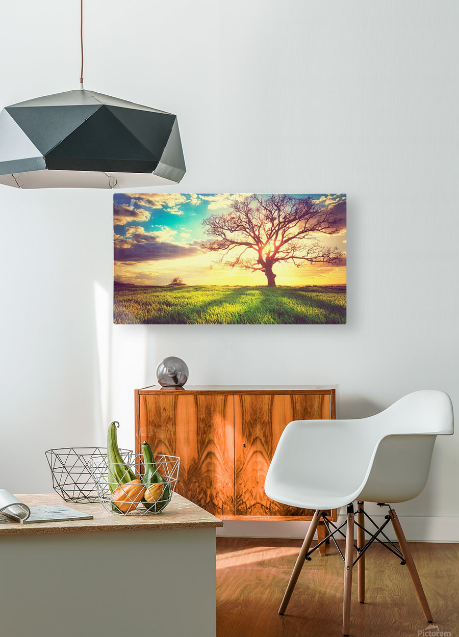 nature 05  HD Metal print with Floating Frame on Back