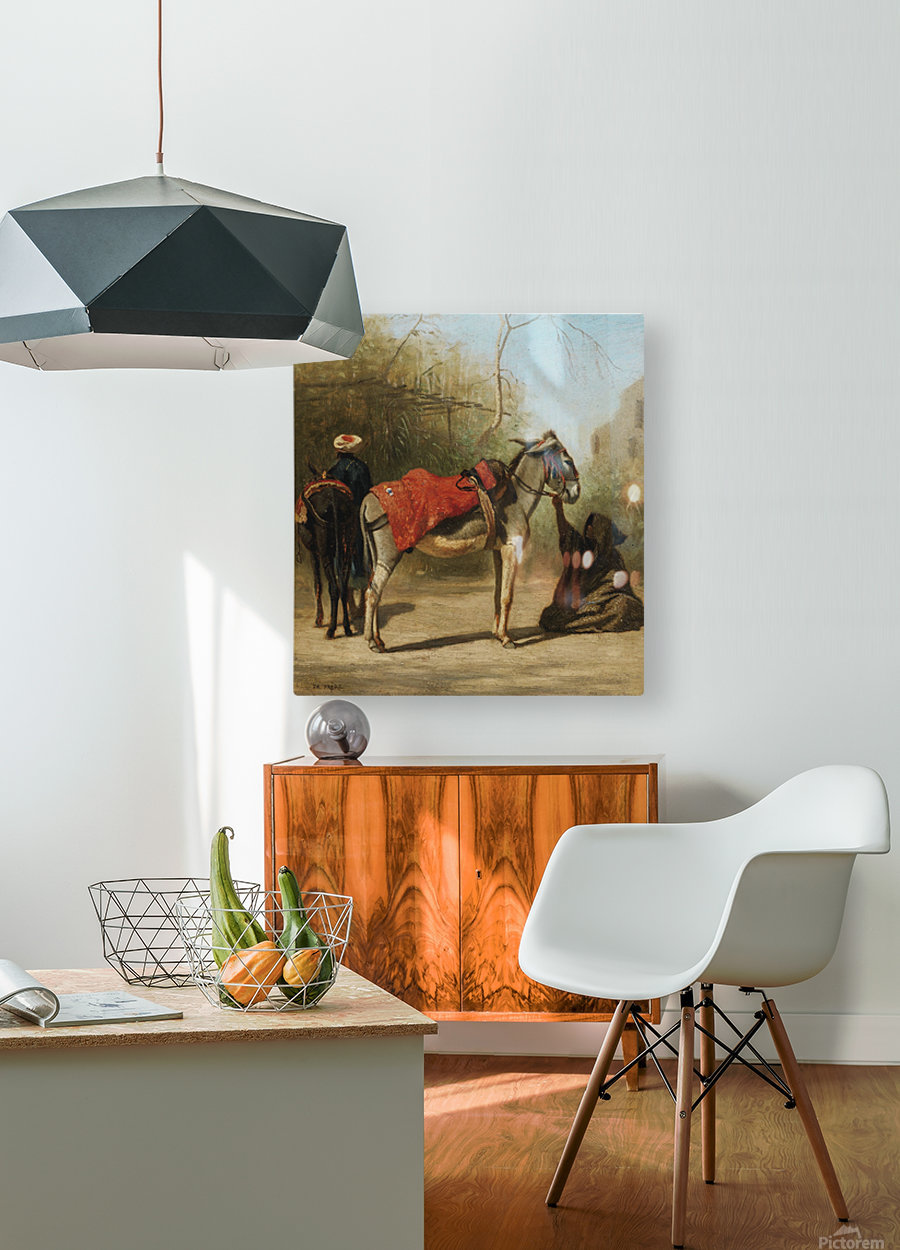 Donkeys in Cairo  HD Metal print with Floating Frame on Back