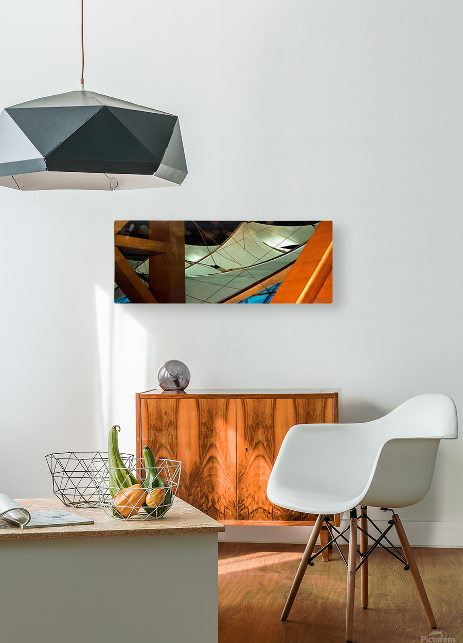 Multi Dimensional  HD Metal print with Floating Frame on Back