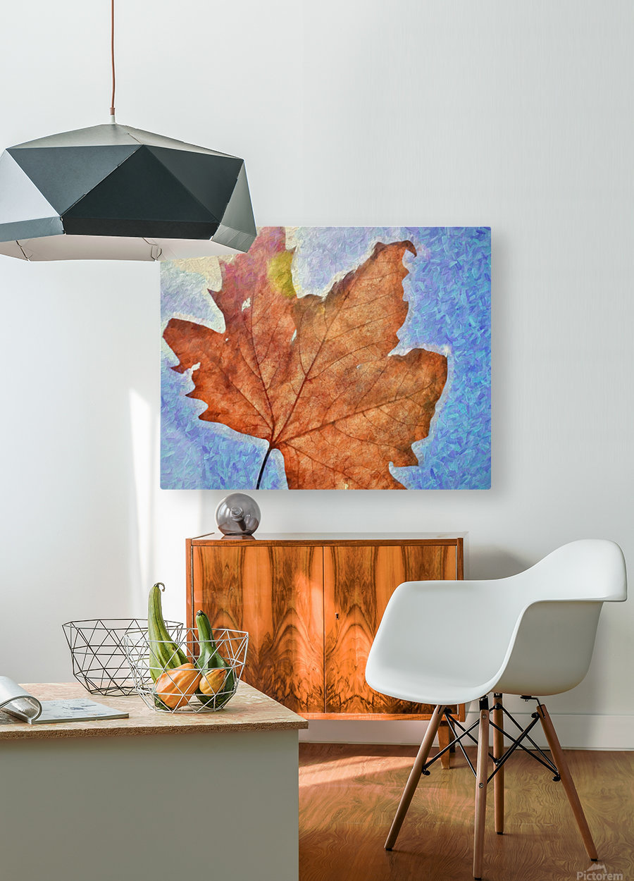 Autumn Leaves Macro 3 Abstract 3  HD Metal print with Floating Frame on Back