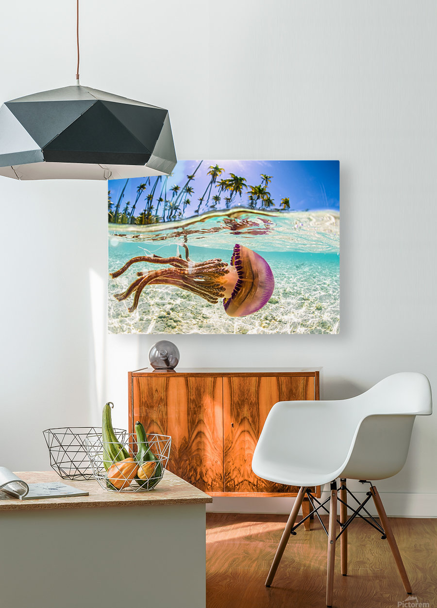 Stow Away  HD Metal print with Floating Frame on Back