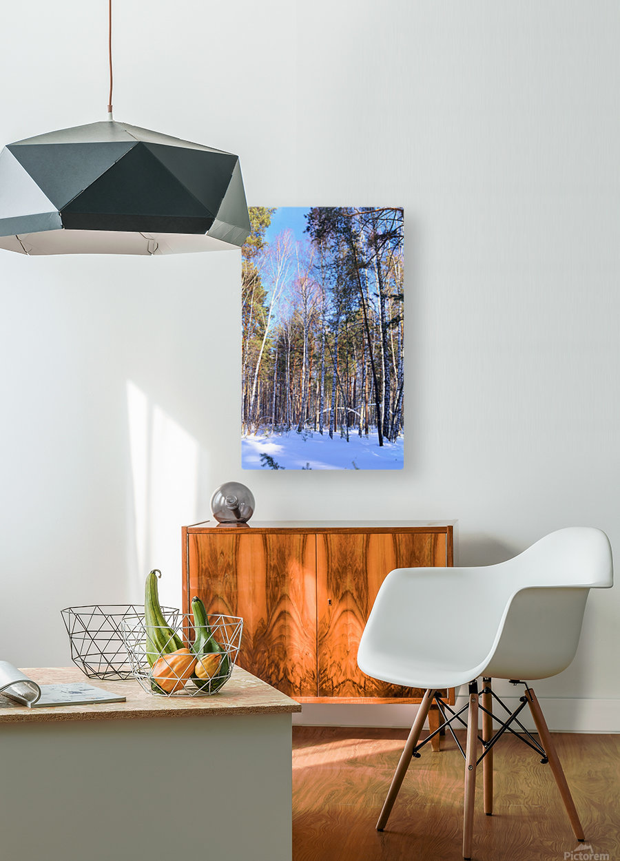 Winter. Forest. Shadow  HD Metal print with Floating Frame on Back
