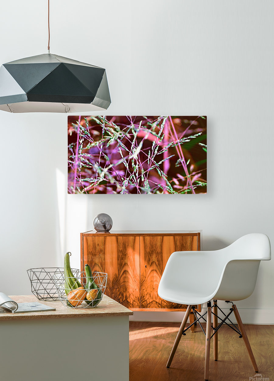 weeds  HD Metal print with Floating Frame on Back
