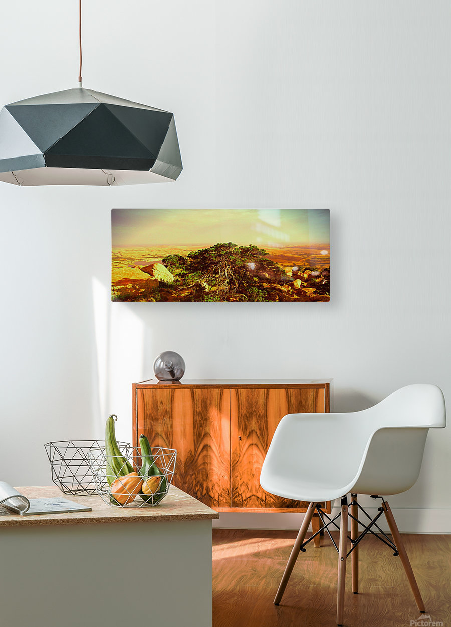 widemountians  HD Metal print with Floating Frame on Back