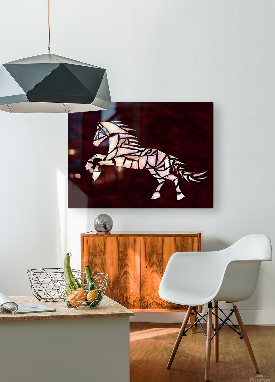 Cavallerone - white horse  HD Metal print with Floating Frame on Back