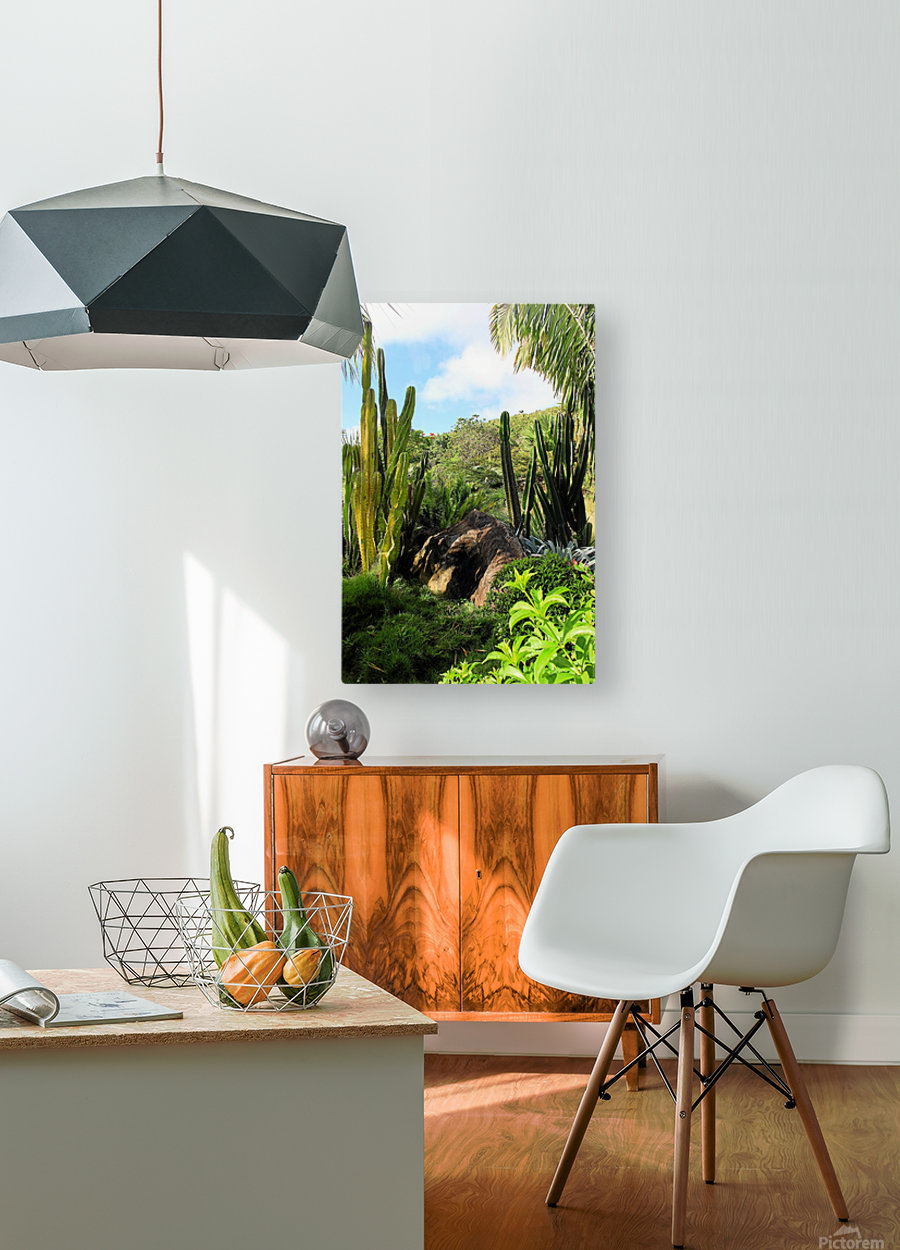 Nevis cactus  HD Metal print with Floating Frame on Back