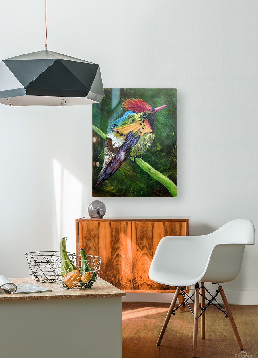 Tufted Coquette Hummingbird  HD Metal print with Floating Frame on Back