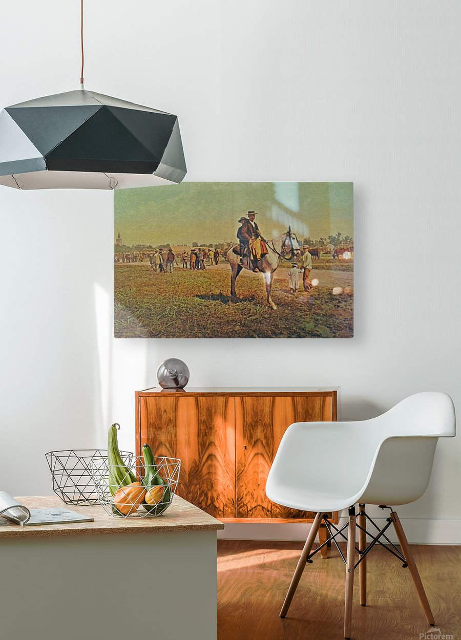 Visiting the fair  HD Metal print with Floating Frame on Back
