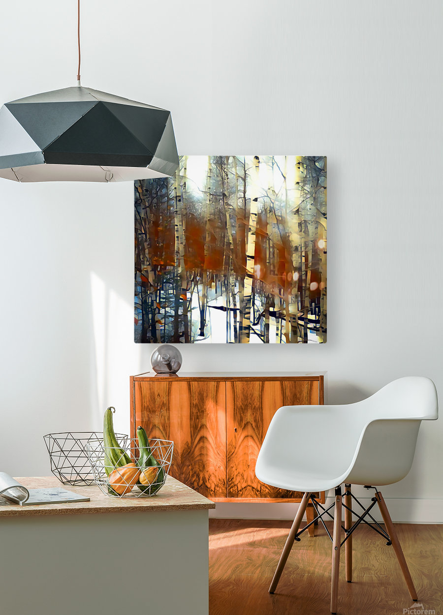 aspen dreams  HD Metal print with Floating Frame on Back