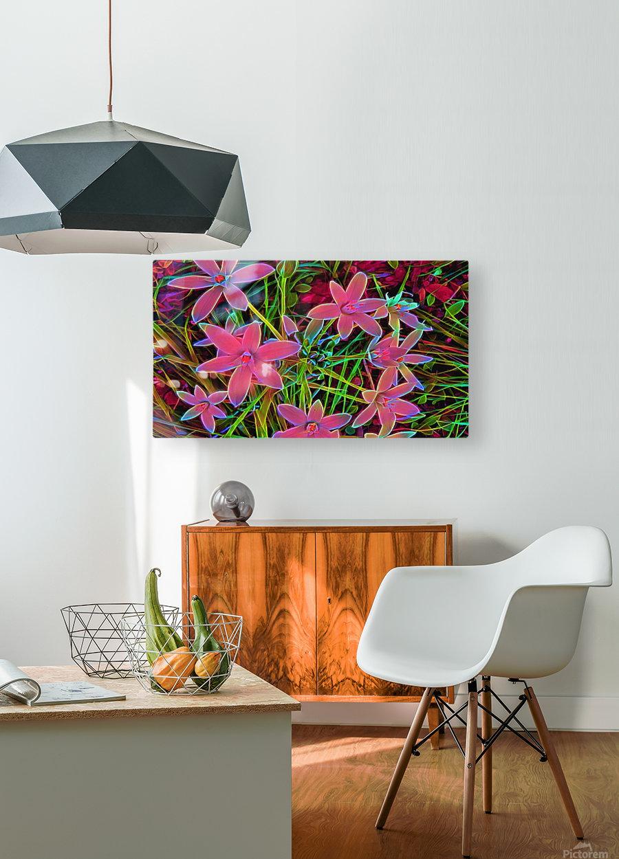 radiantplant  HD Metal print with Floating Frame on Back